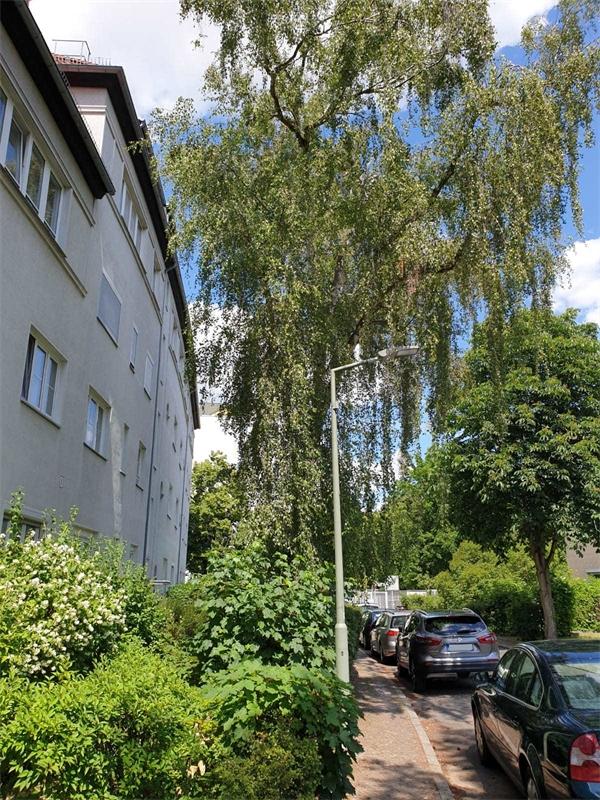 Haus in Strasse